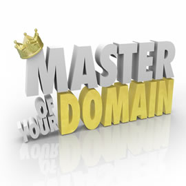 Helping businesses with your Domain Authority